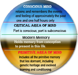 Mind Theory/conscious and subconscious mind